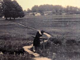 1946-4