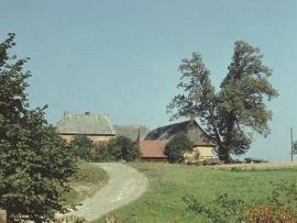 c101-1970